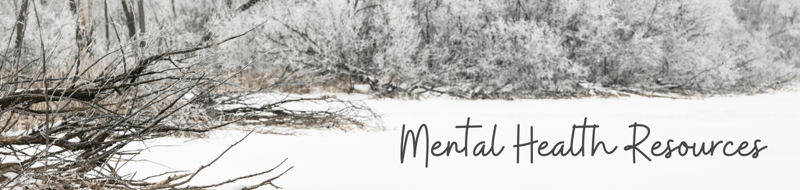 Mental Health Resources with a photo of trees in the winter